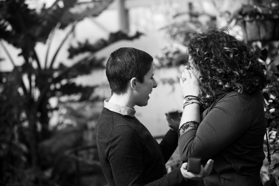 Image 5 of Lydia and Jessica's Marriage Proposal at the Franklin Park Conservatory