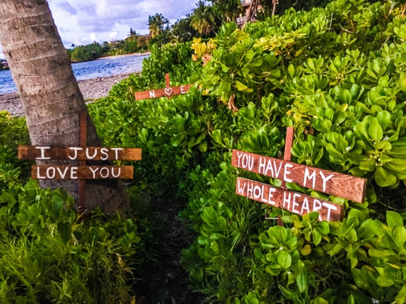 Image 6 of HOW SHE ASKED: Nicole and Emily's Sunset Surprise Marriage Proposal in Maui