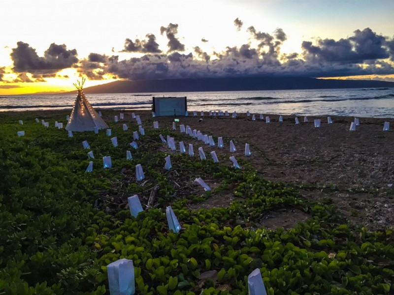 Same Sex Surprise Marriage Proposal at Sunset in Maui Hawaii (16) (800x600)
