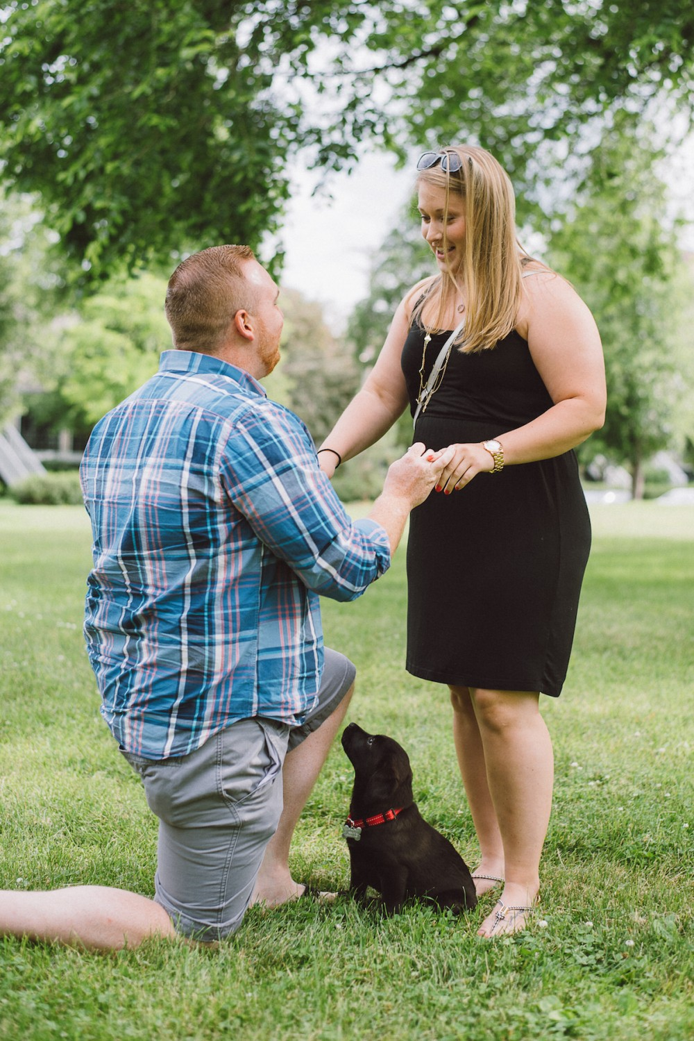 Image 5 of Stefani and Rollen's Surprise Puppy Proposal