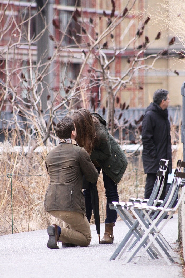 Image 3 of Emily and Paul | New York City Highline Proposal