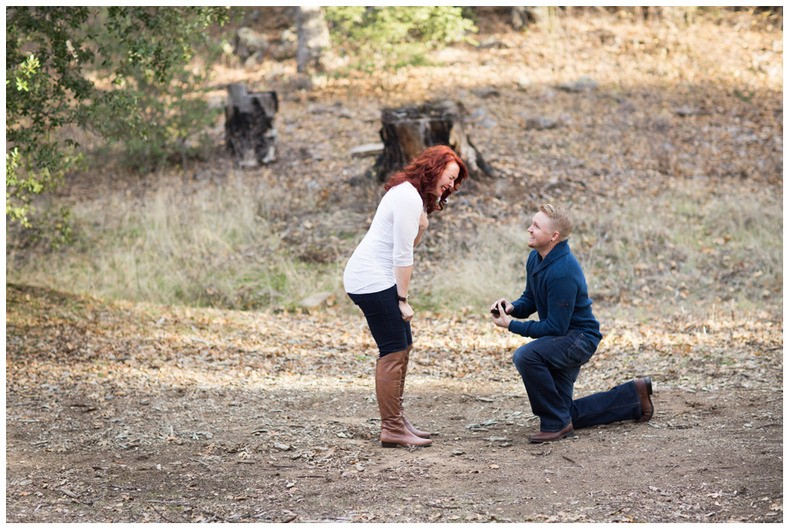 Image 4 of Jessica and David's Family Proposal