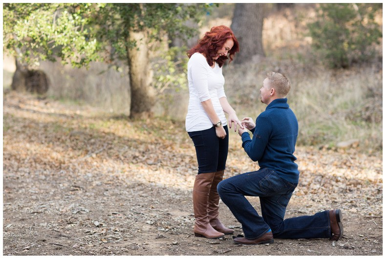 Image 6 of Jessica and David's Family Proposal