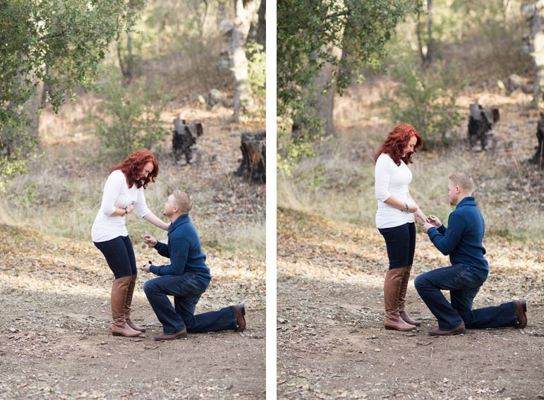 Image 5 of Jessica and David's Family Proposal