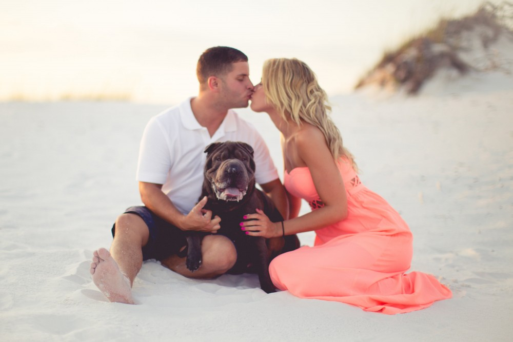 Image 1 of Emma and Rob's Pup-posal on the Beach