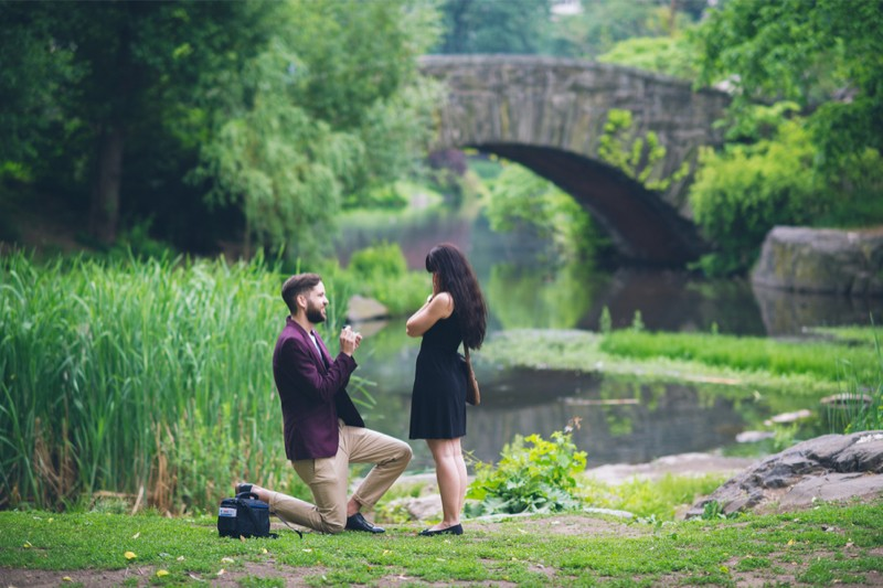 Image 2 of Manuel and Jessica's Central Park Proposal