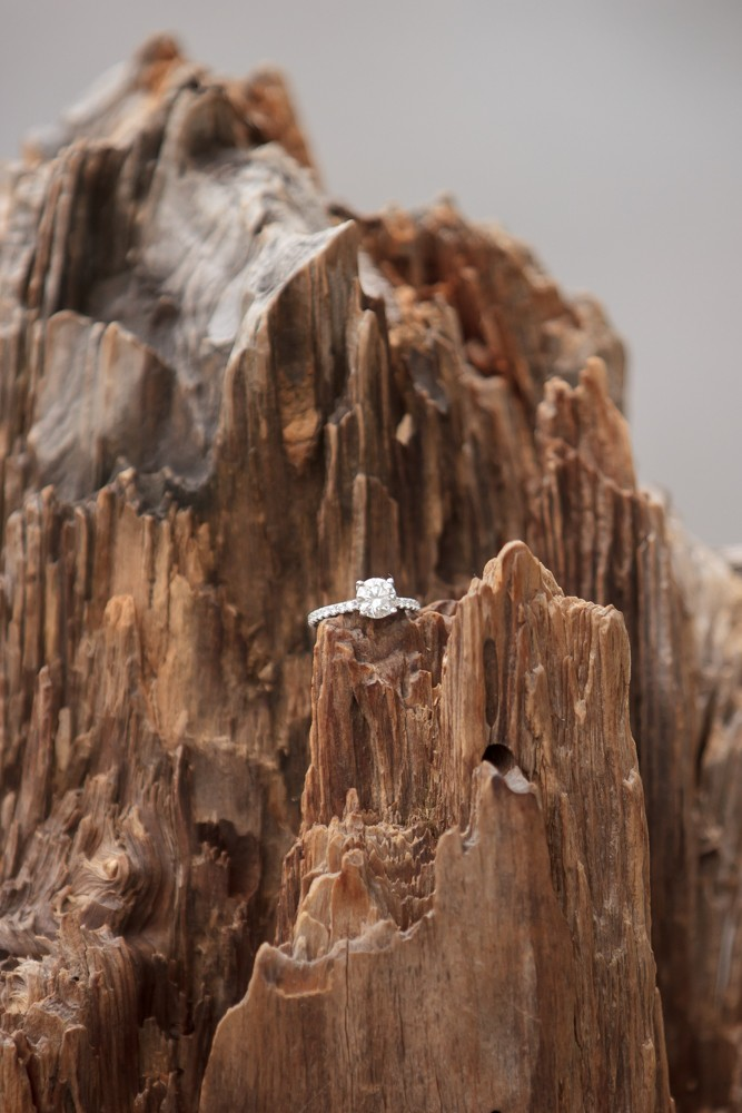 Image 9 of Jordan and Trevor's Amazing Emerald Bay Proposal in Lake Tahoe