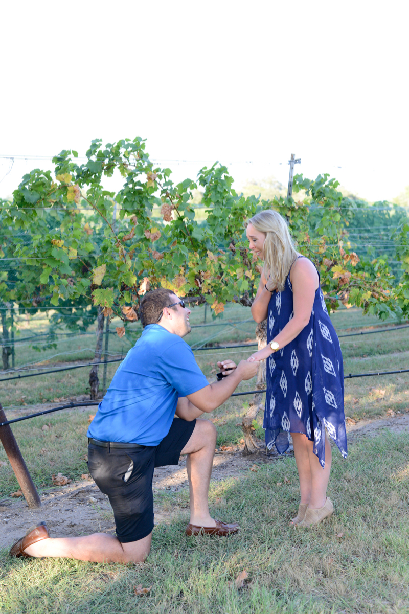 Image 4 of Chris and Paige's Flat Creek Winery Marriage Proposal
