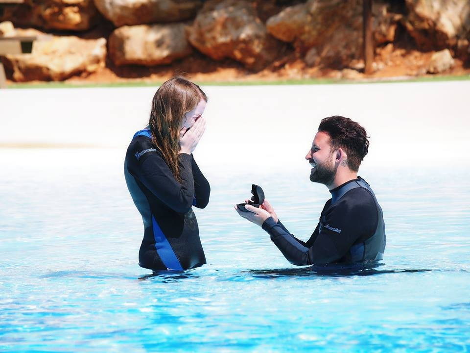 Image 1 of Shelley and Jamie's Amazing Dolphin Marriage Proposal