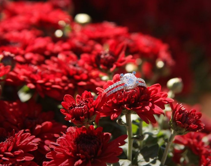 The beautiful ring with the red mums.