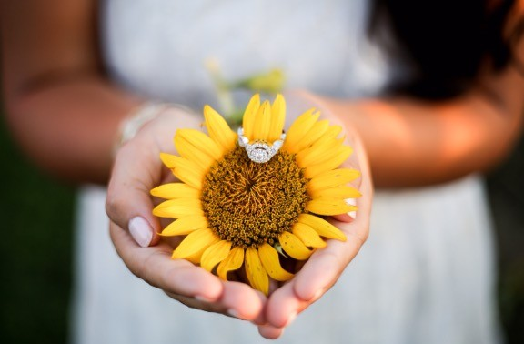 Image 6 of Jessica and Tyler's Sunflower Proposal