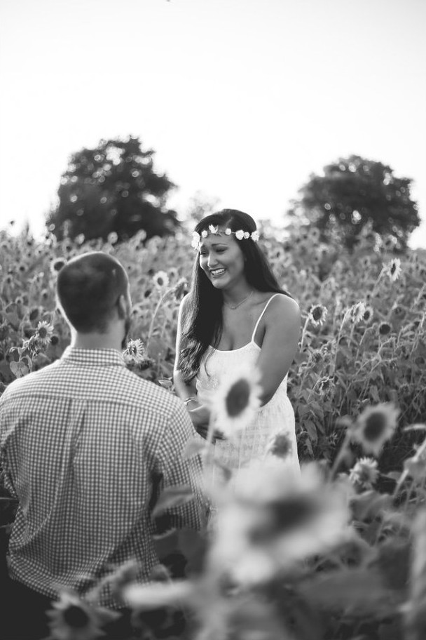 Sunflower Proposal (3)