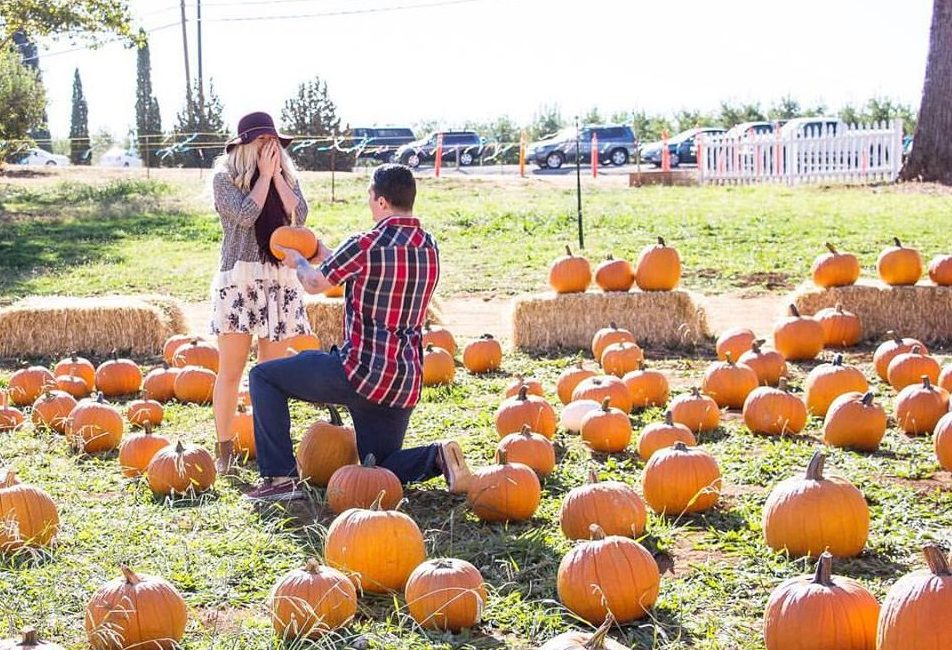 Where to Propose in Placerville, California