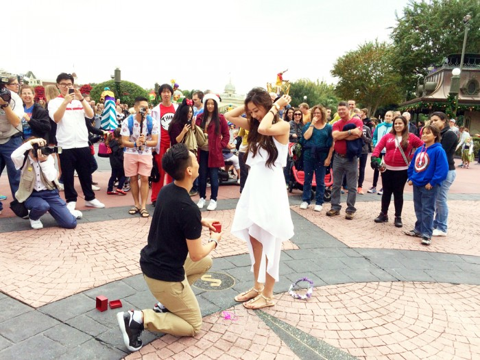 Walt Disney World Proposal