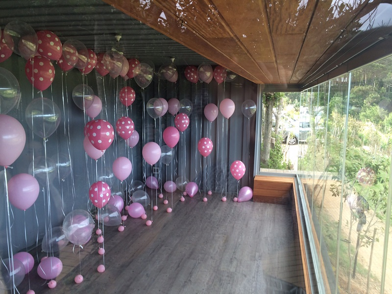 Cape Town Pink Balloon Proposal (9)