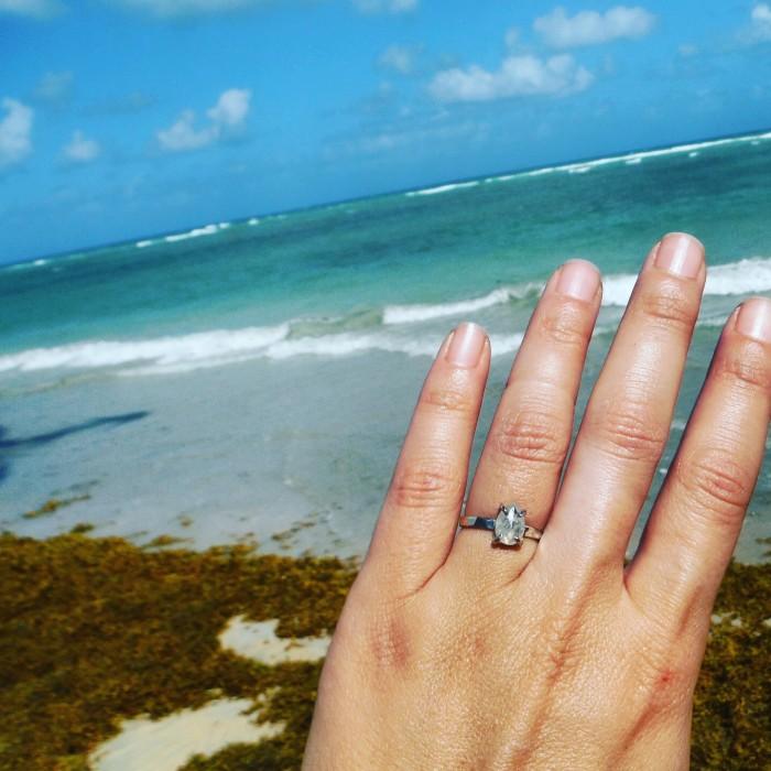 Tropical Proposal (3)