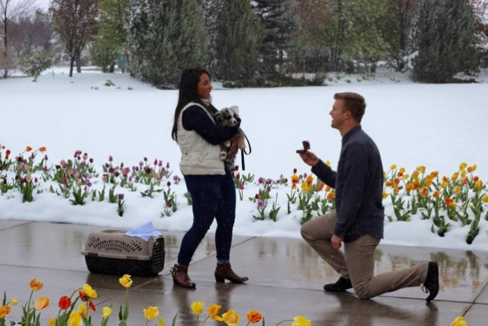 free puppy turns into marriage proposal