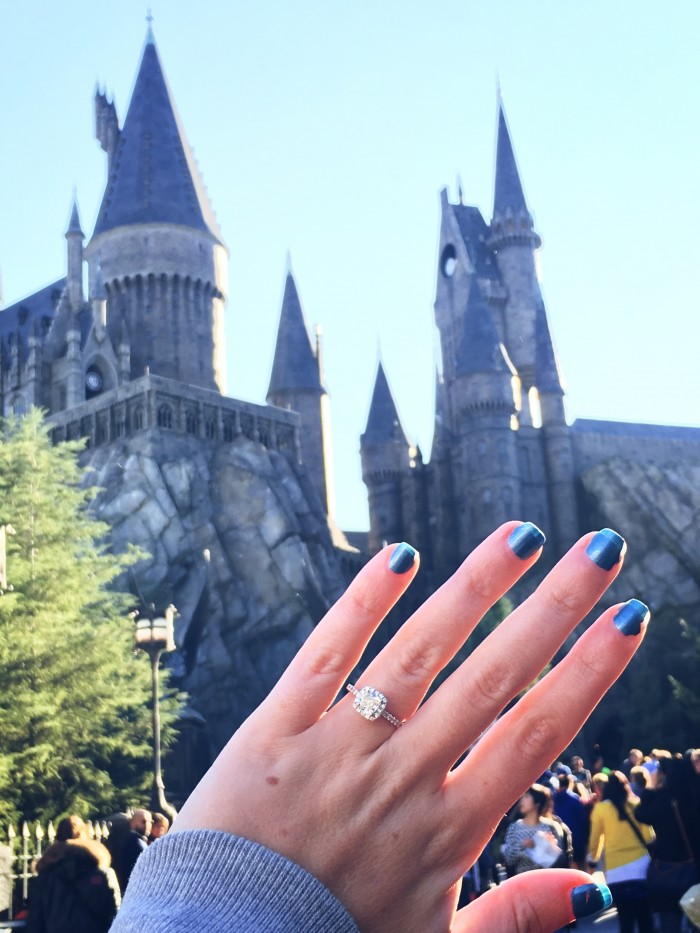 Harry Potter Proposal 2