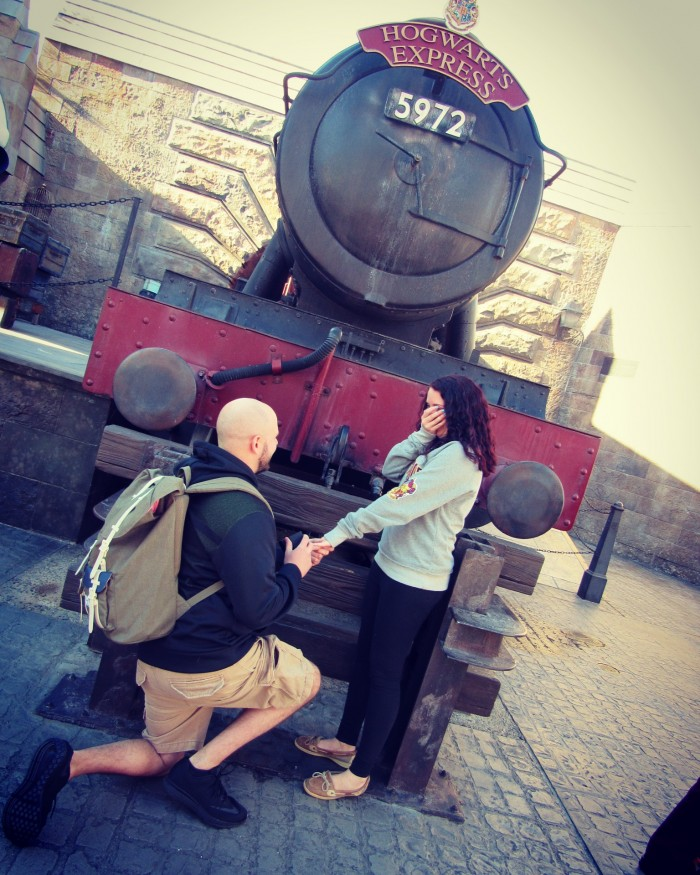 Image 2 of Wizarding World of Harry Potter Proposal