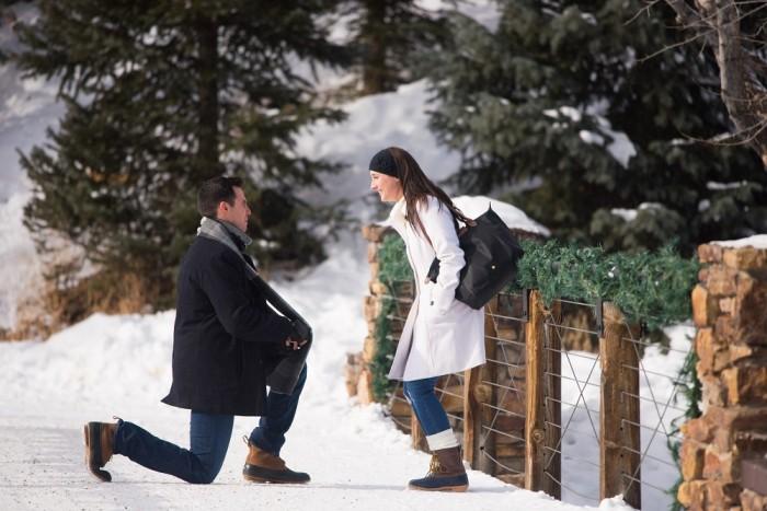 Snowy Proposal  (4)