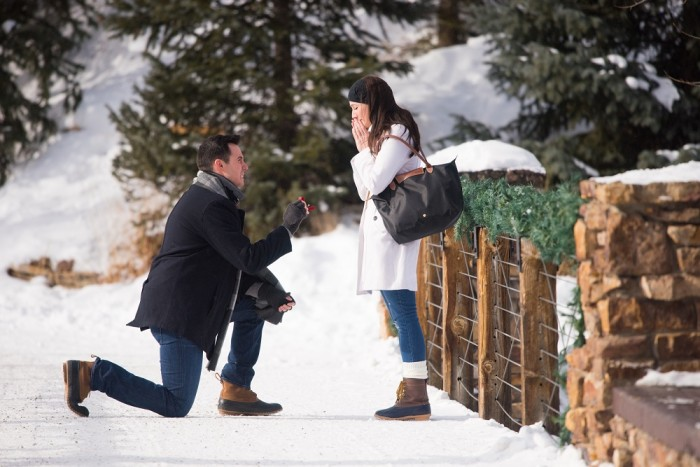 Snowy Proposal  (5)