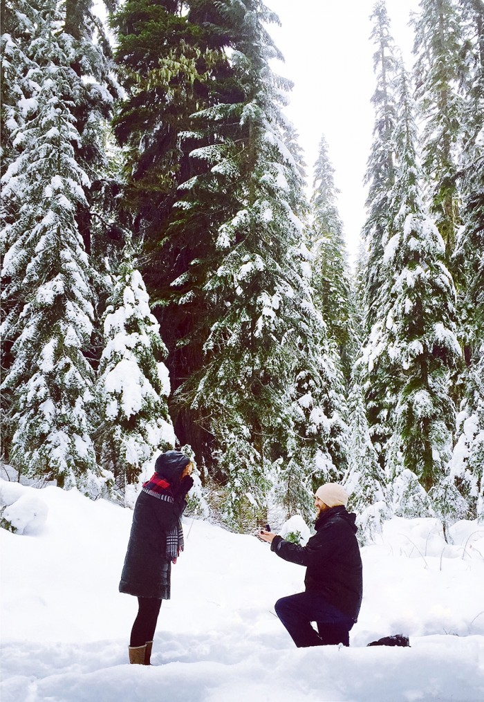 Proposal in Winter Wonderland photos