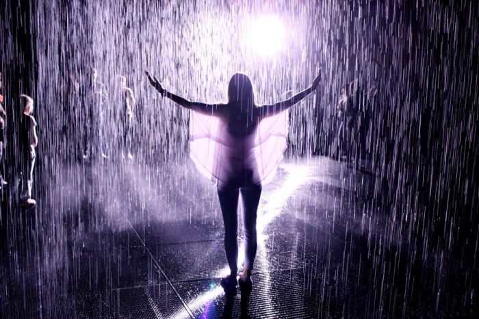 Melissa and Sean\'s Proposal in the Rain Room