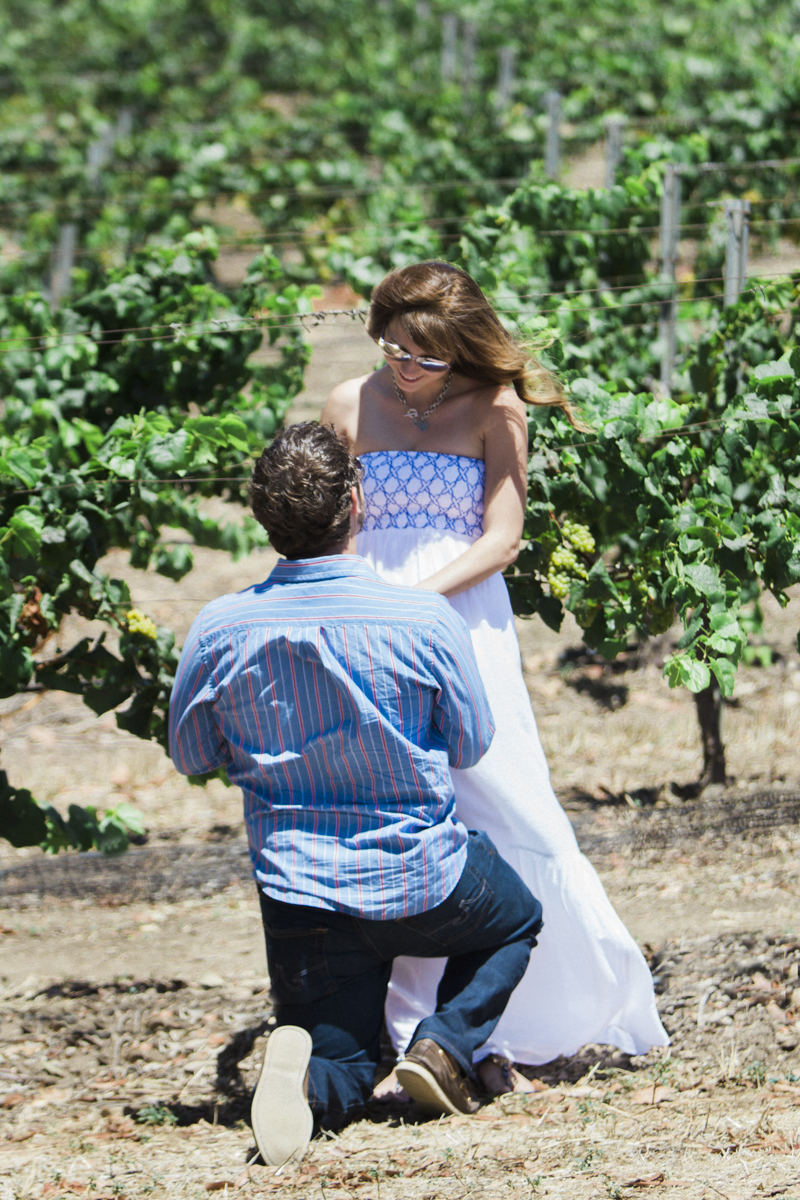 Image 3 of Ashley and Steven's Vineyard Proposal
