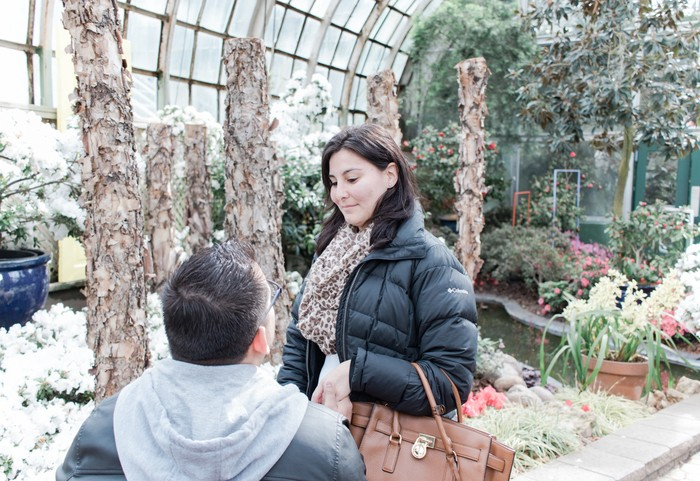 Image 5 of Andres and Paula's Proposal at the Lincoln Park Conservatory