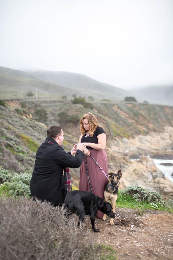 Big Sur Surprise Proposal