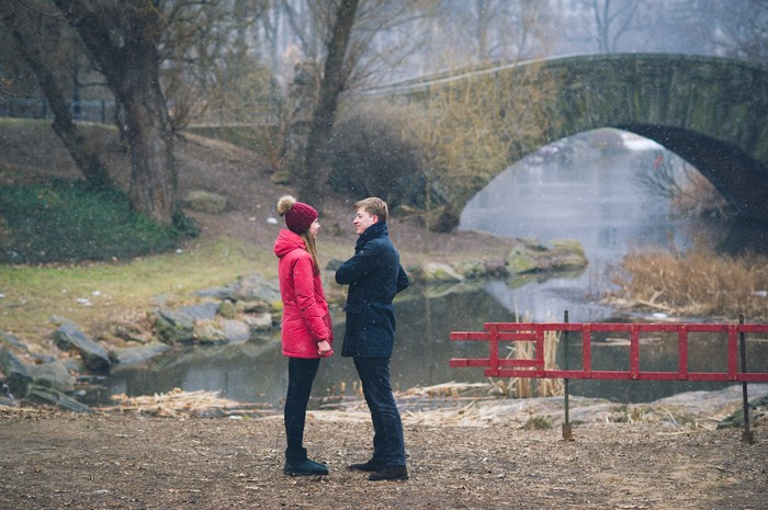 Image 4 of Marek and Anja's Dreamy Central Park Proposal