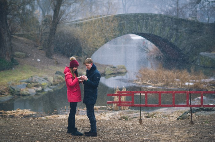 Image 7 of Marek and Anja's Dreamy Central Park Proposal