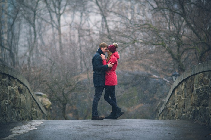 Image 3 of Marek and Anja's Dreamy Central Park Proposal