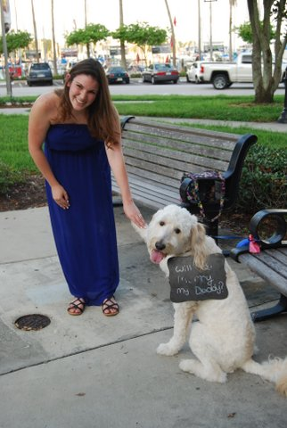 Will You Marry My Daddy Puppy Proposal (6)