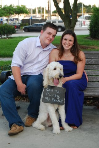 Will You Marry My Daddy Puppy Proposal (7)