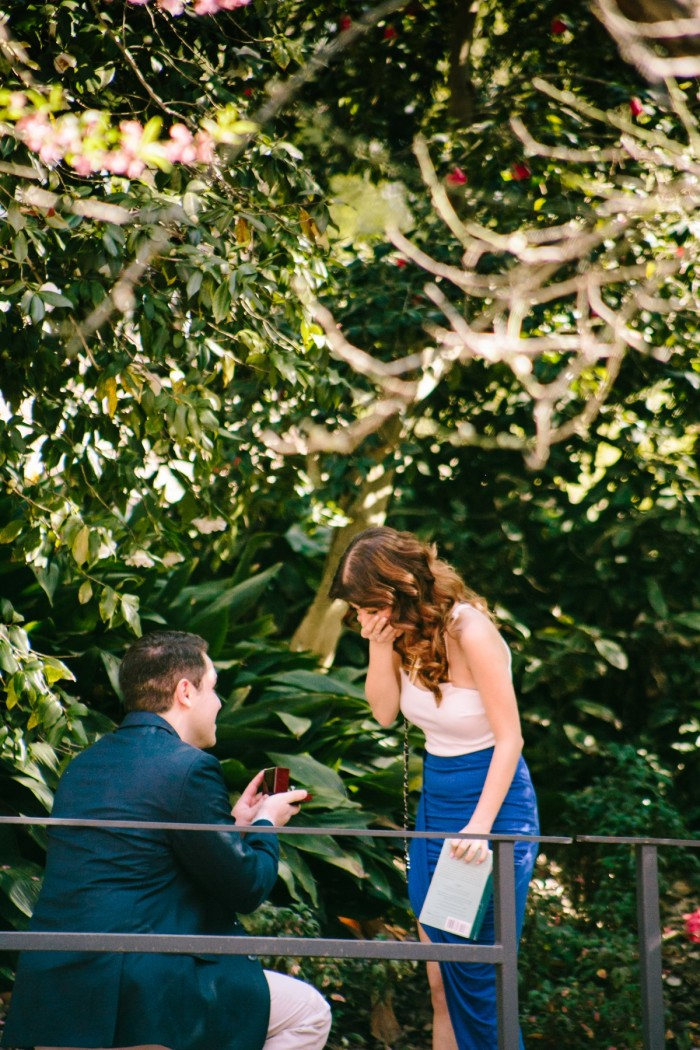 Cherry Blossom Proposal in Los Angeles (3)