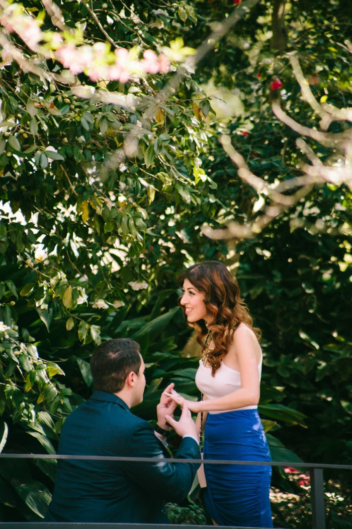 Cherry Blossom Proposal in Los Angeles (7)