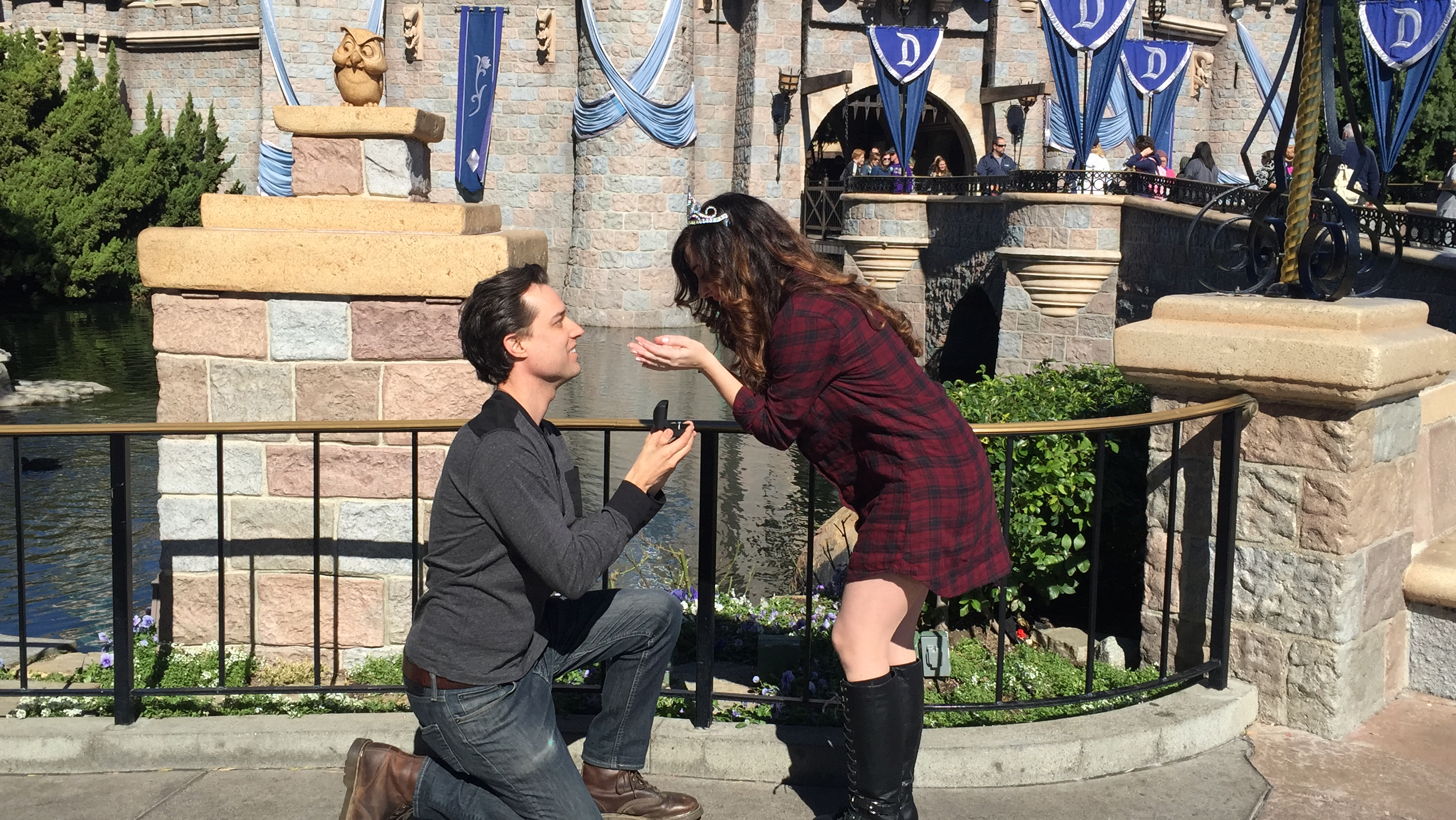 Image 1 of Drew and Andrea's Princess and the Frog Proposal