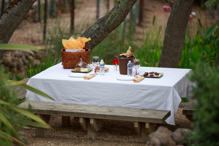 Image 5 of Luis and Silvana's Garden Proposal