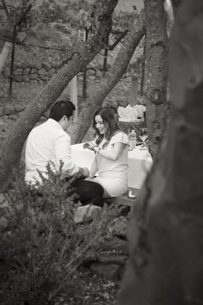 Image 9 of Luis and Silvana's Garden Proposal