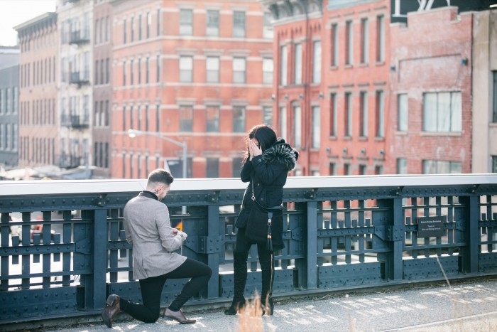 Image 4 of Kev and Sophie's Proposal on the High Line