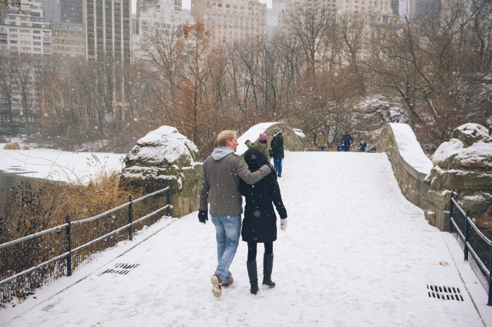 Snowy Central Park Proposal (1)