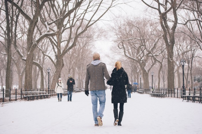 Snowy Central Park Proposal (26)