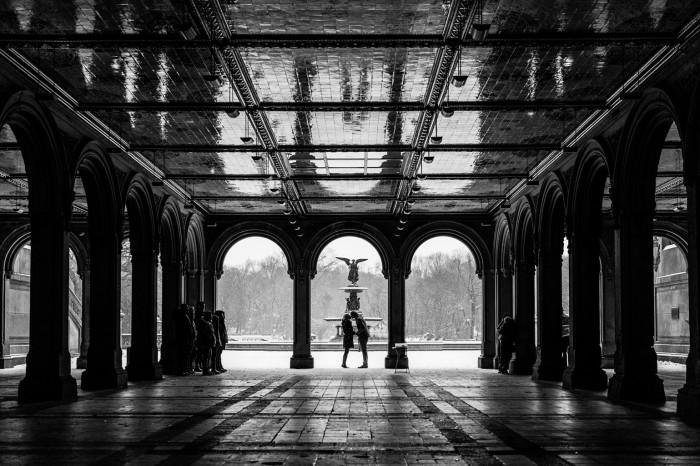 Snowy Central Park Proposal (39)