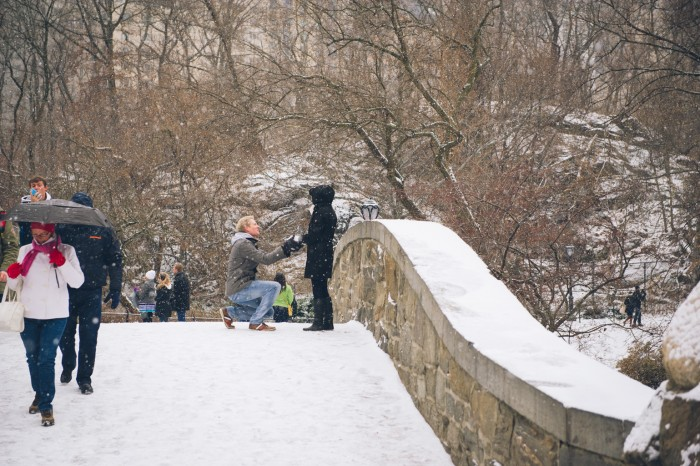 Snowy Central Park Proposal (4)