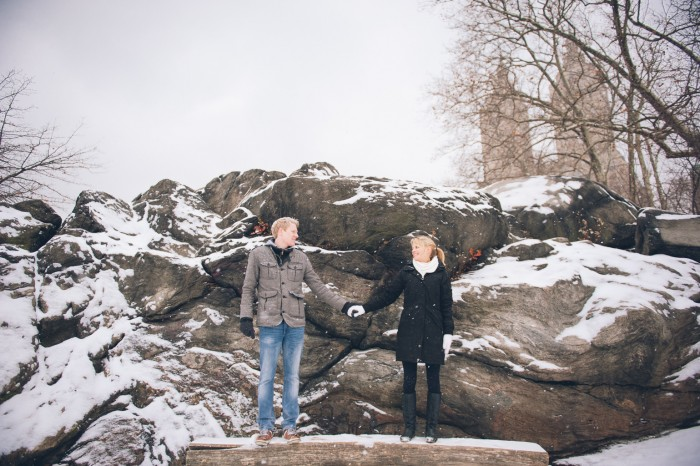 Snowy Central Park Proposal (53)