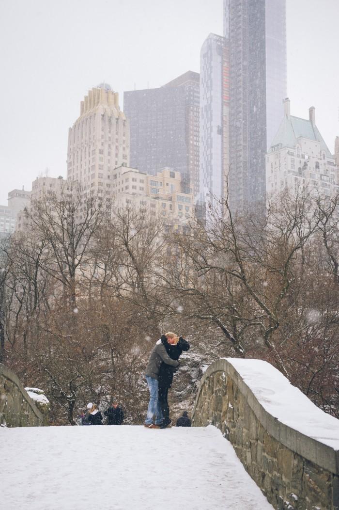 Snowy Central Park Proposal (7)