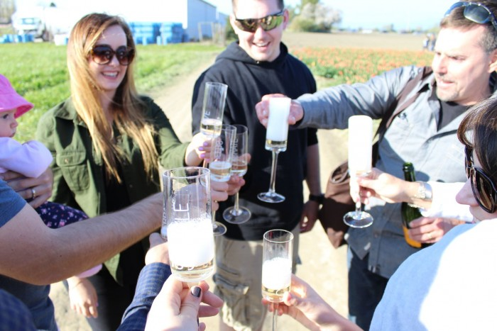 Toasting the engagement t