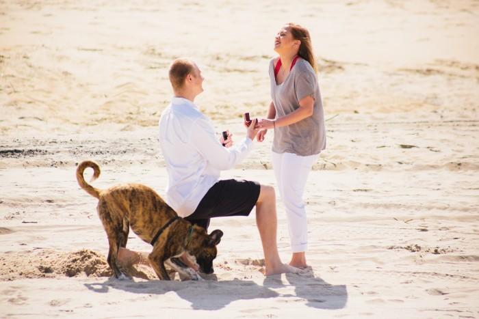 In Shock Proposal
