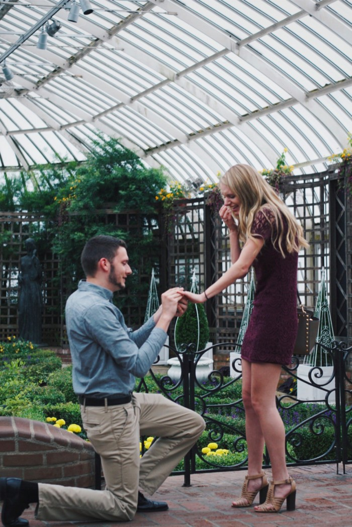 Marriage Proposal at phipps conservatory and botanical gardens_1_1